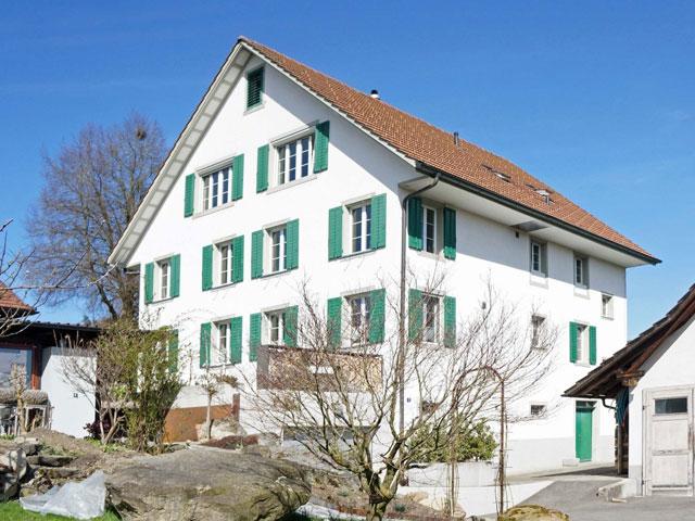 EFH Aemmetstrasse Rifferswil